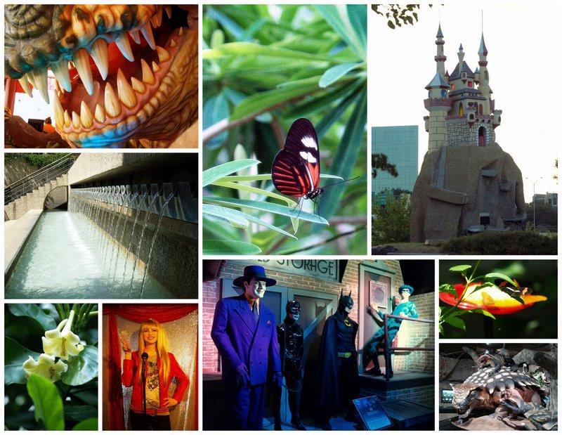 2009-08-10_13 Summer Vacation