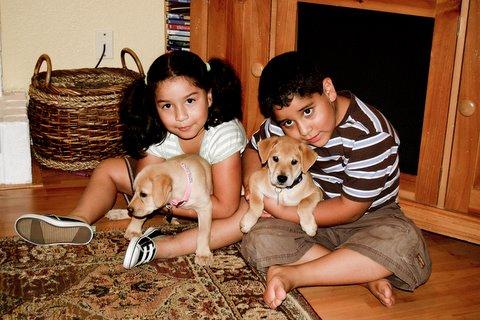 2009-09-12 New Puppies 016-2